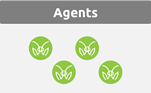 Agents-MantisNet